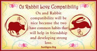 ox rabbit compatibility