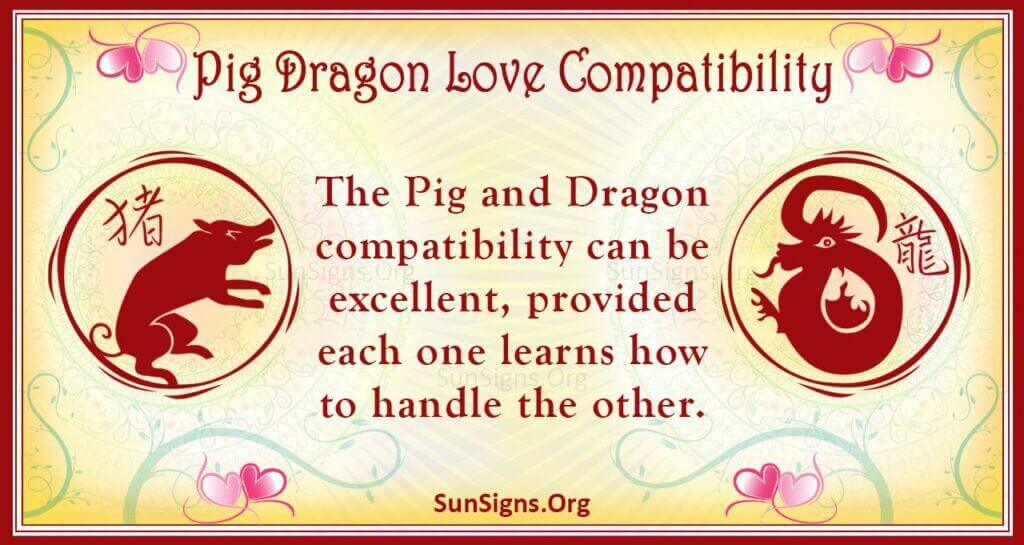 pig dragon compatibility