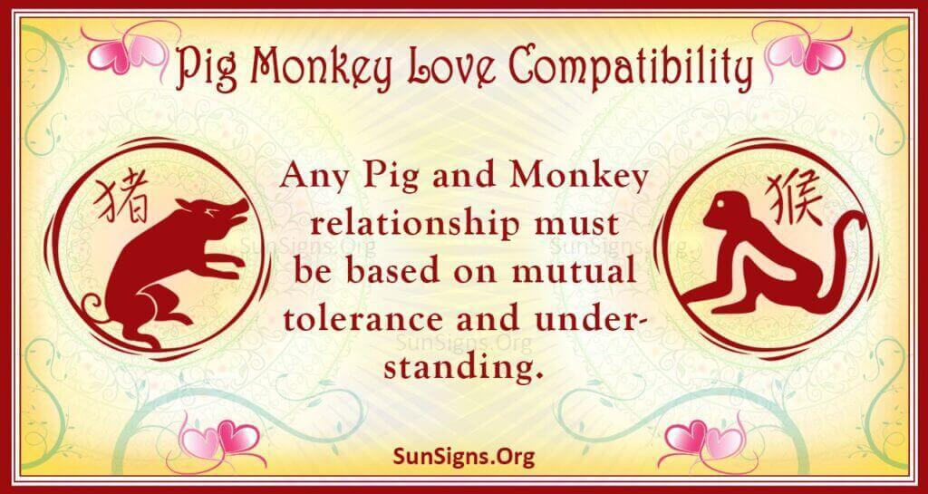 pig monkey compatibility