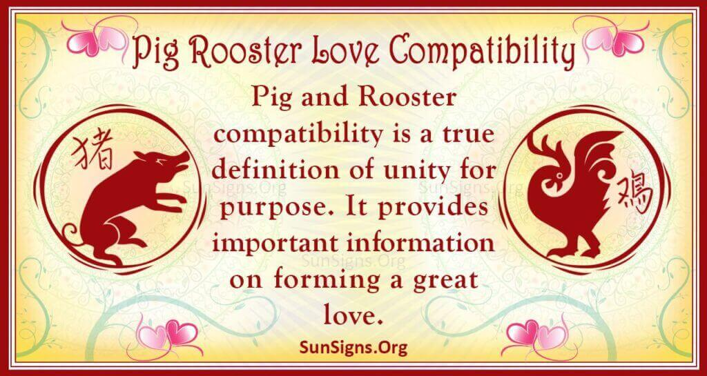 pig rooster compatibility