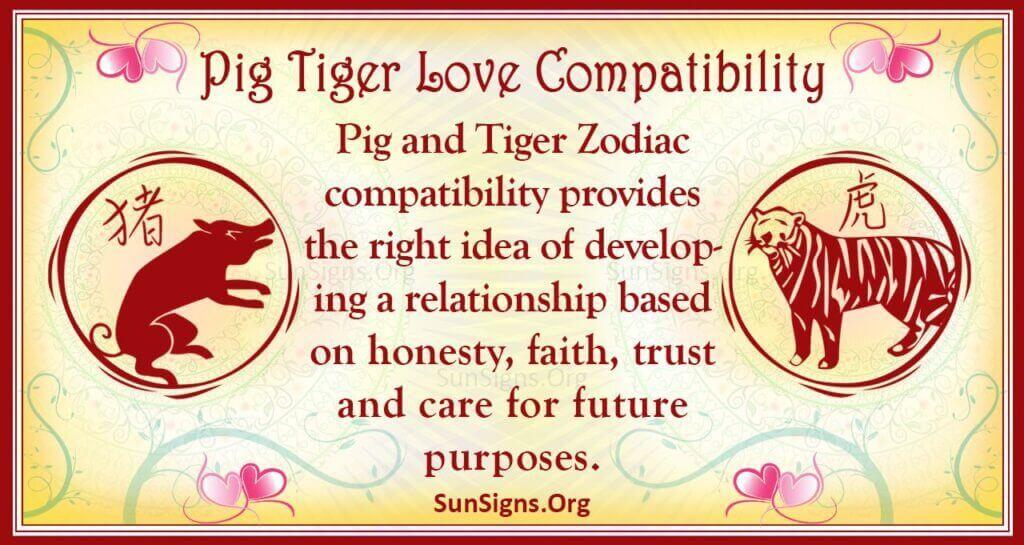 pig tiger compatibility
