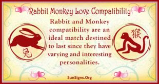 rabbit monkey compatibility