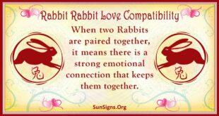 rabbit rabbit compatibility