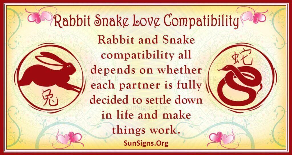 rabbit snake compatibility