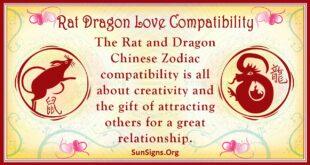 rat dragon compatibility