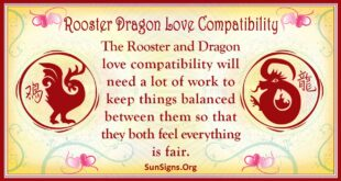 rooster dragon compatibility