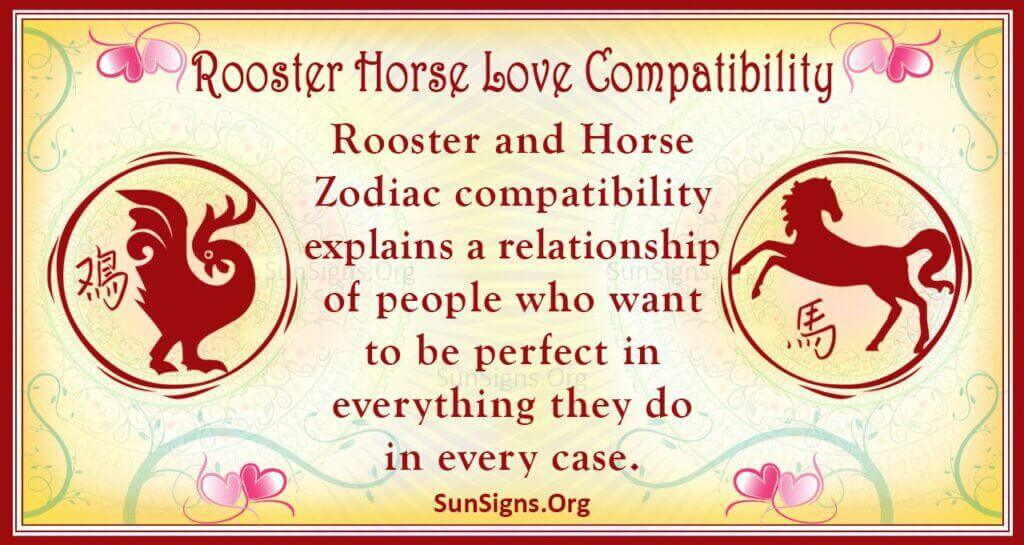 rooster horse compatibility