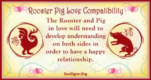 rooster pig compatibility