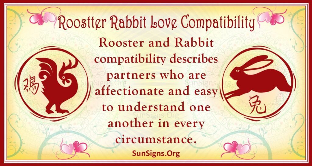 rooster rabbit compatibility