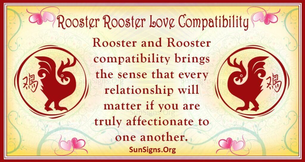rooster rooster compatibility