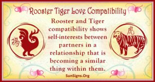 rooster tiger compatibility