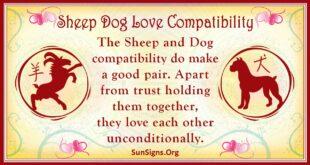 sheep dog compatibility