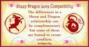 sheep dragon compatibility