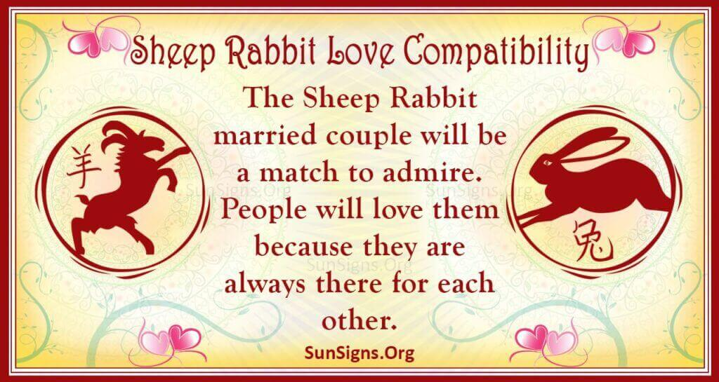 sheep rabbit compatibility