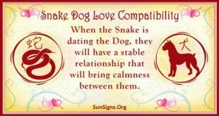 snake dog compatibility