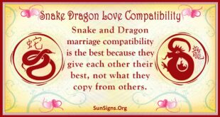 snake dragon compatibility