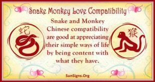 snake monkey compatibility