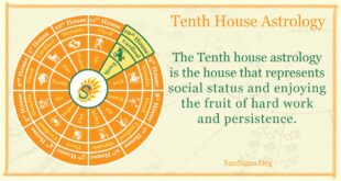 tenth house astrology