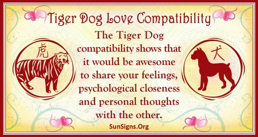 tiger dog compatibility