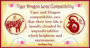 tiger dragon compatibility