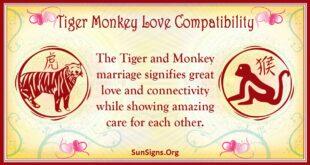 tiger monkey compatibility
