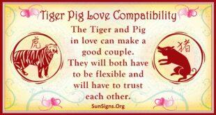 tiger pig compatibility